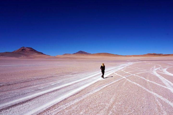 Bolivie Désert d'Uyuni 106