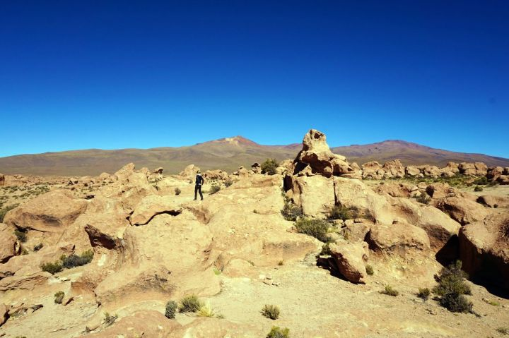 Bolivie Désert d'Uyuni 126
