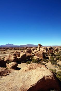 Bolivie Désert d'Uyuni 129