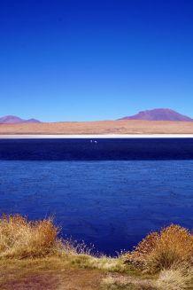 Bolivie Désert d'Uyuni 18