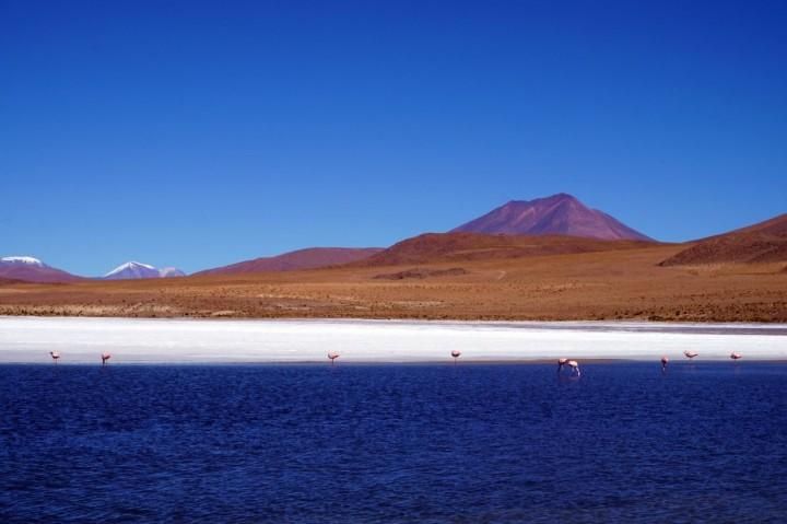 Bolivie Désert d'Uyuni 24.JPG