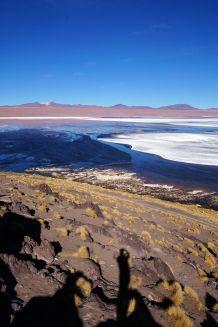 Bolivie Désert d'Uyuni 76