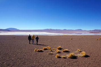 Bolivie Désert d'Uyuni 91