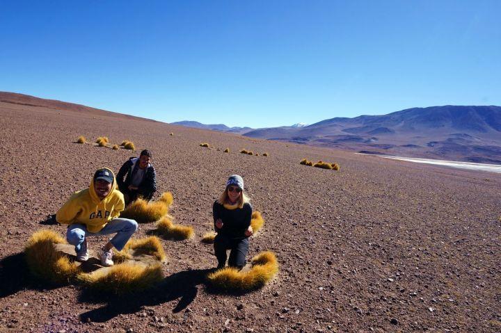 Bolivie Désert d'Uyuni 92