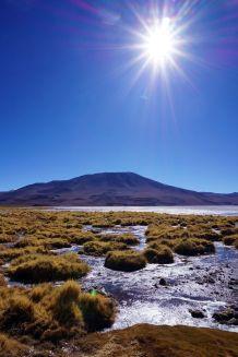Bolivie Désert d'Uyuni 98