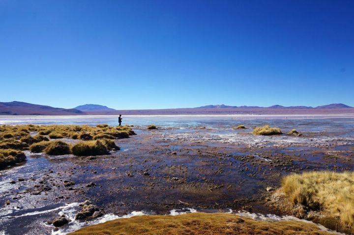 Bolivie Désert d'Uyuni 99