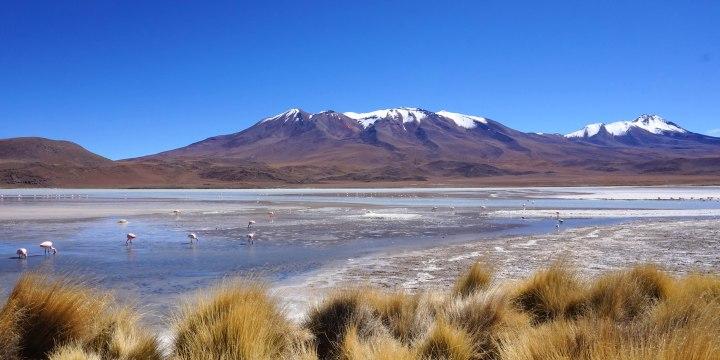 Bolivie Desert d Uyuni