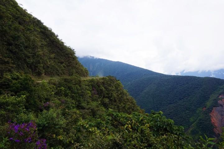 Bolivie La Paz Route de la Mort Yungas 53