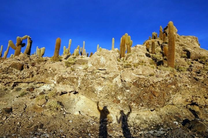 Bolivie Salar d'Uyuni 100