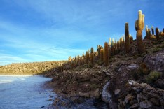 Bolivie Salar d'Uyuni 90