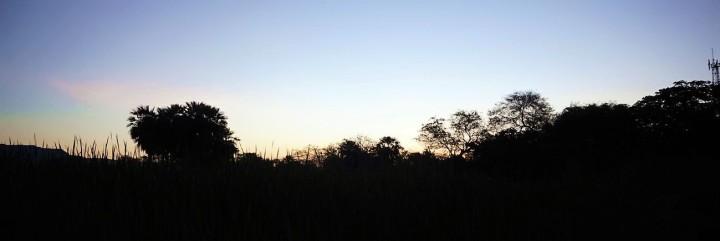 Bolivie San Jose de Chiquito 25
