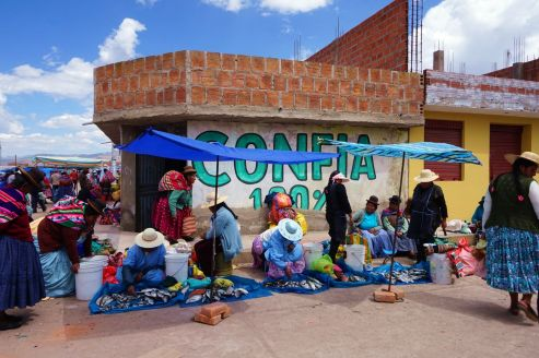 Perou Chacachaca 12