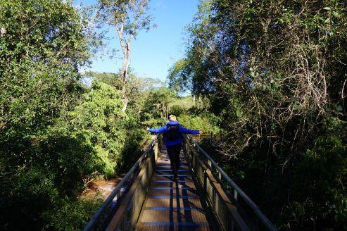 Argentine Puerto Iguacu Chutes 47