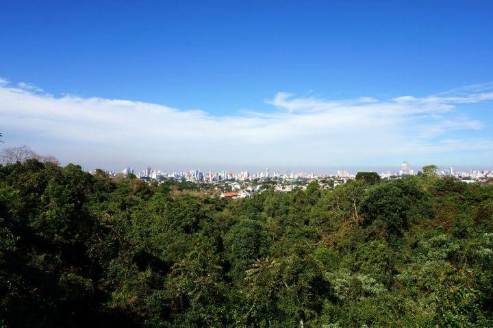 Bresil Curitiba 32