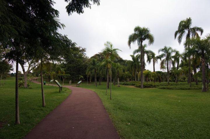 Bresil Curitiba 64.JPG