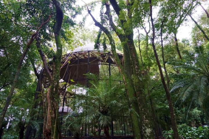 Bresil Foz do Iguacu 69.JPG
