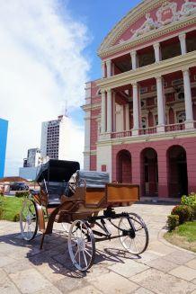 Bresil Manaus 04