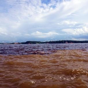 Bresil Manaus Jungle 02