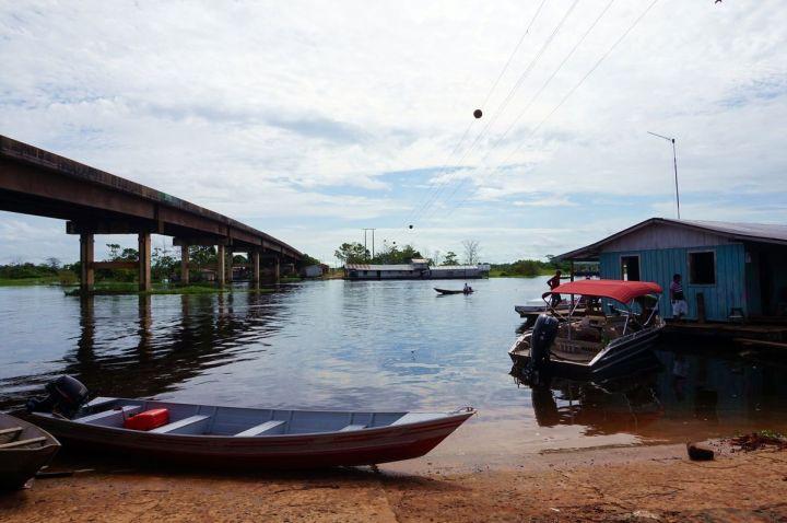 Bresil Manaus Jungle 05