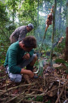 Bresil Manaus Jungle 149