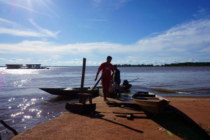 Bresil Manaus Jungle 197.JPG