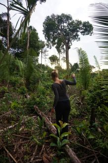 Bresil Manaus Jungle 20