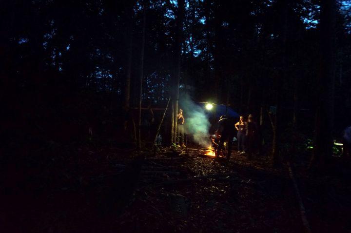 Bresil Manaus Jungle 31.JPG