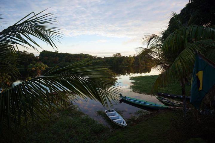 Bresil Manaus Jungle 35