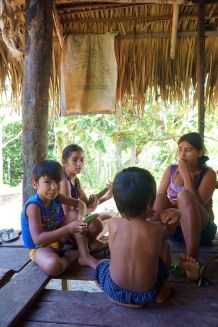 Bresil Manaus Jungle 46