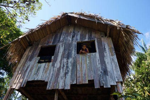 Bresil Manaus Jungle 59
