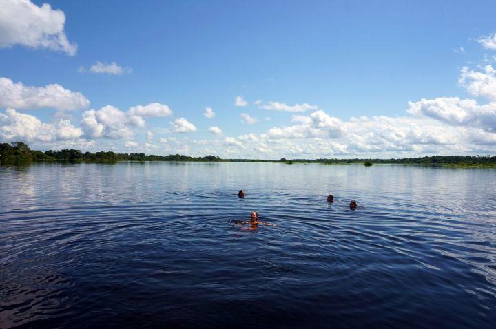 Bresil Manaus Jungle 63