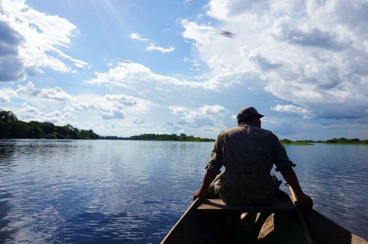 Bresil Manaus Jungle 74