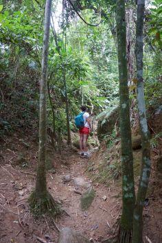 Bresil Isla Grande 22