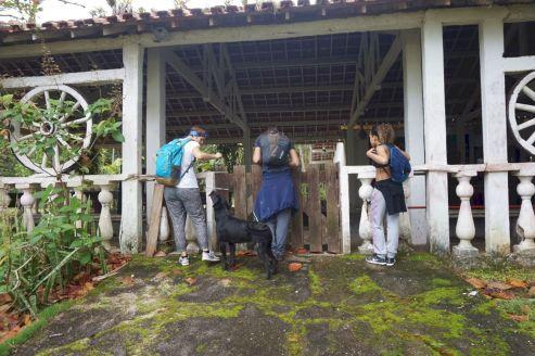 Bresil Isla Grande 46