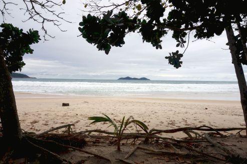 Bresil Isla Grande 62
