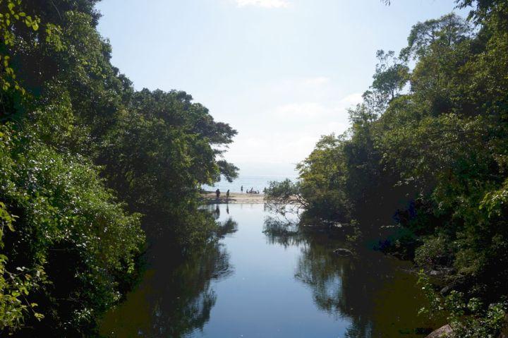 Bresil Isla Grande 73